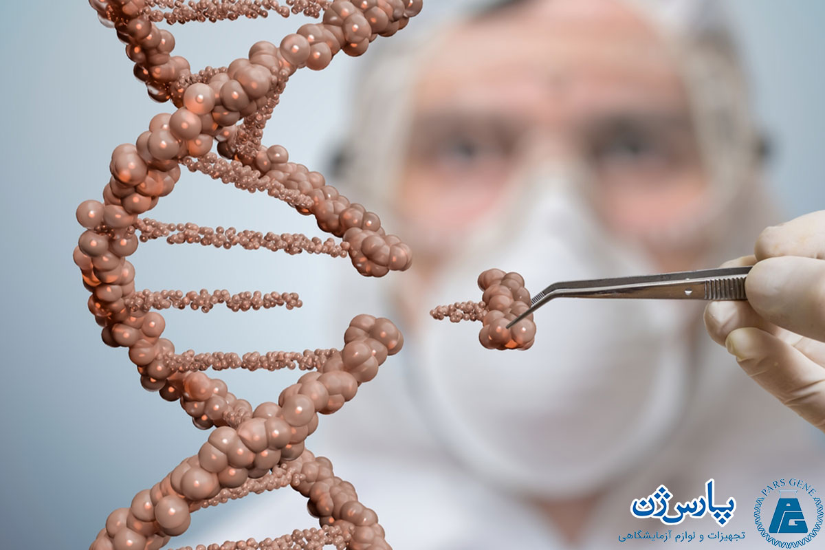 کلونینگ ژن (Gene Cloning) به بیان ساده