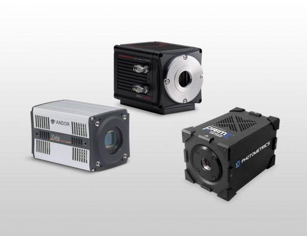 sCMOS Cameras